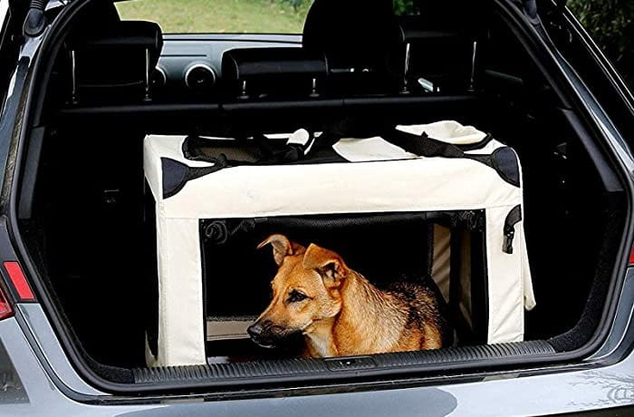 Hundebox-Faltbar-Test